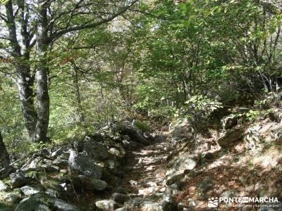 Montaña palentina;laguna de sanabria tren a navacerrada actividades culturales en madrid